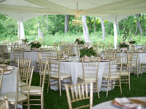 szampanskie-krzesła